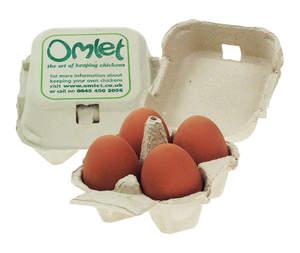 Omlet Egg Boxes - 20 Pack - Holds Four Eggs