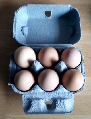 Blue Egg Box