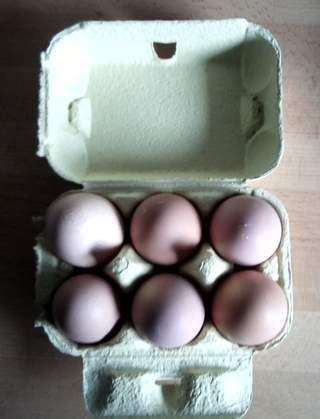 Yellow Egg Box
