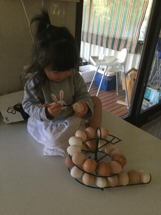 This sketler makes egg labelling easier!