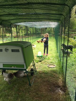 Gwen dans notre enclos de 18m!