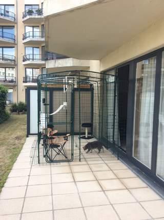 Grand Enclos Pour Chat de Baba & Boubou à Bruxelles