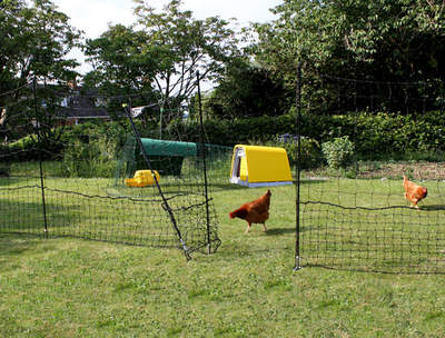Omlet Chicken Fencing - 32 metres  - Inc. Gate, Double Spike Poles and Guy Lines
