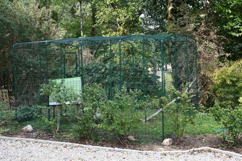 grand enclos pour poules
