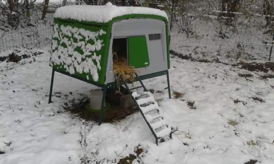Grand Poulailler Eglu Cube sous la neige