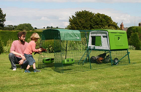 The Eglu Cube with a one metre run extension.